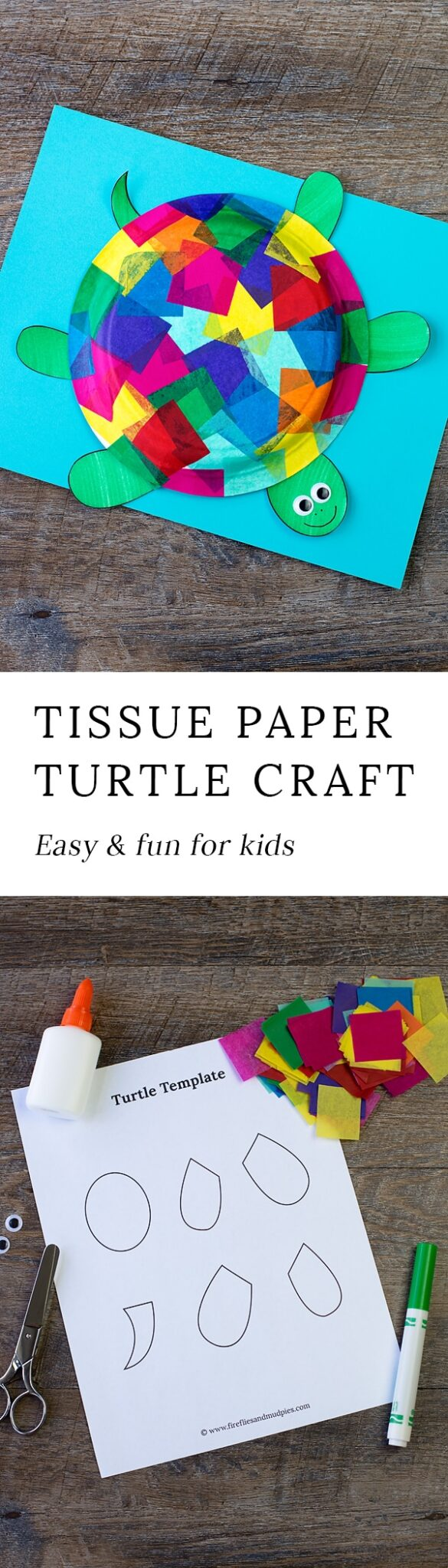 tissue paper and paper plate turtle craft
