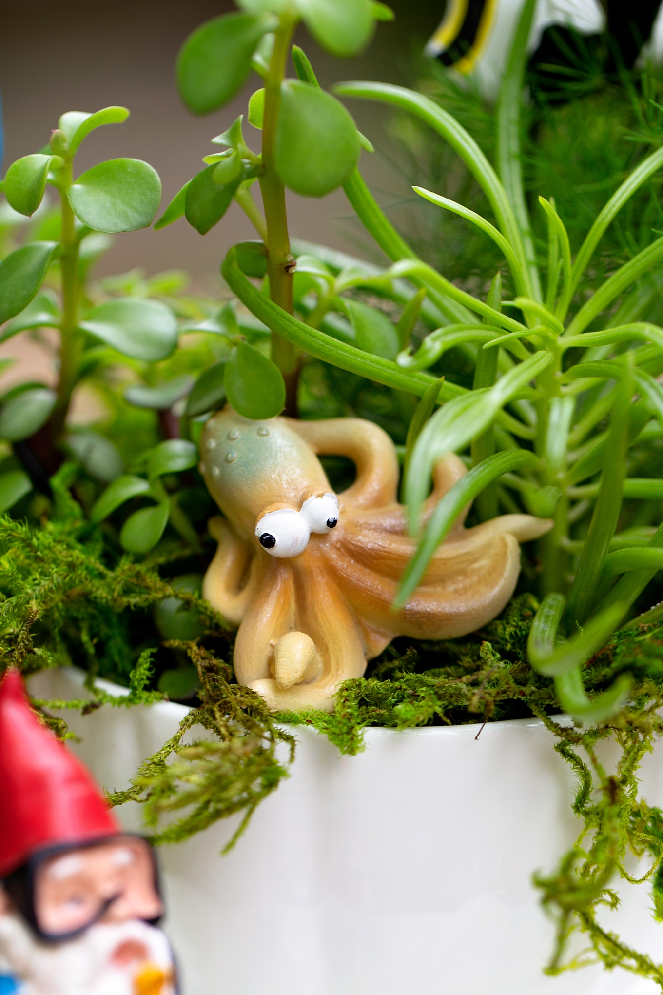 Resin Octopus Tucked into Succulents and Moss