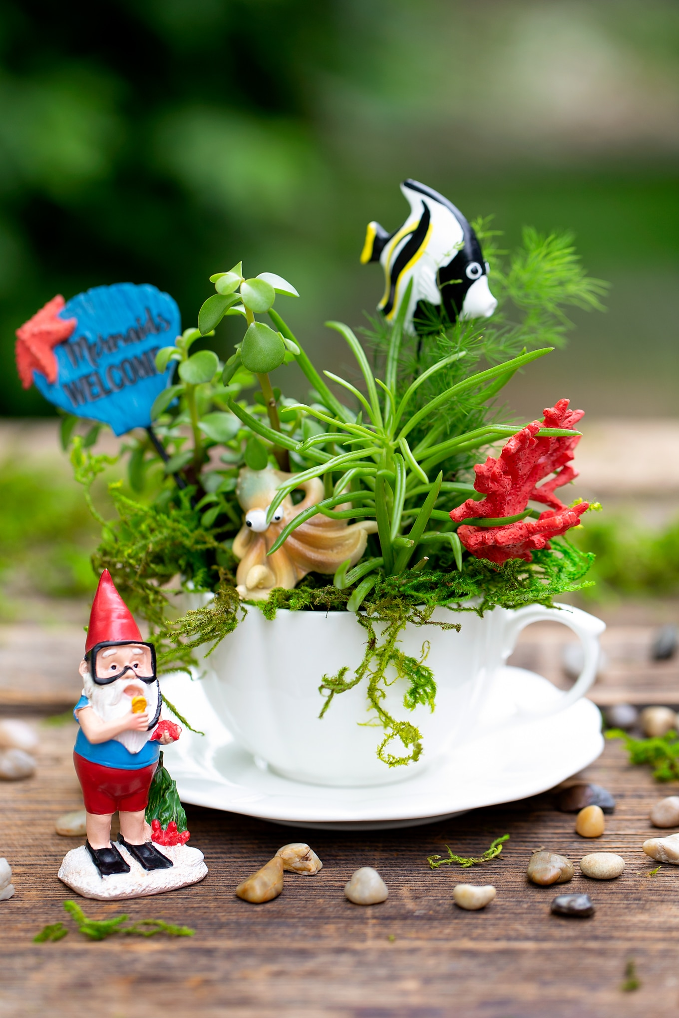 How to Make an Under the Sea Teacup Garden