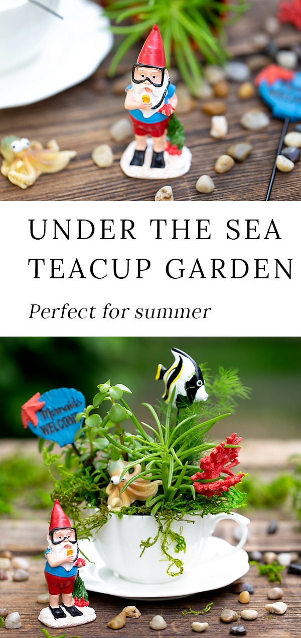 Summer is the perfect season for teacup fairy gardens! Whether kids are learning about the ocean, summer, gardening, or simply enjoying a creative nature activity at home, this easy and fun Under the Sea Teacup Garden is simply perfect for imaginative play. #teacupfairygarden #teacupfairygardenideas #howtomakeateacupfairygarden #summercraftideas #fairygarden #fairygardening #fairygardenkids