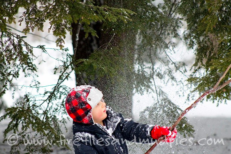 Whacking snow off a tree! | Fireflies and Mud Pies