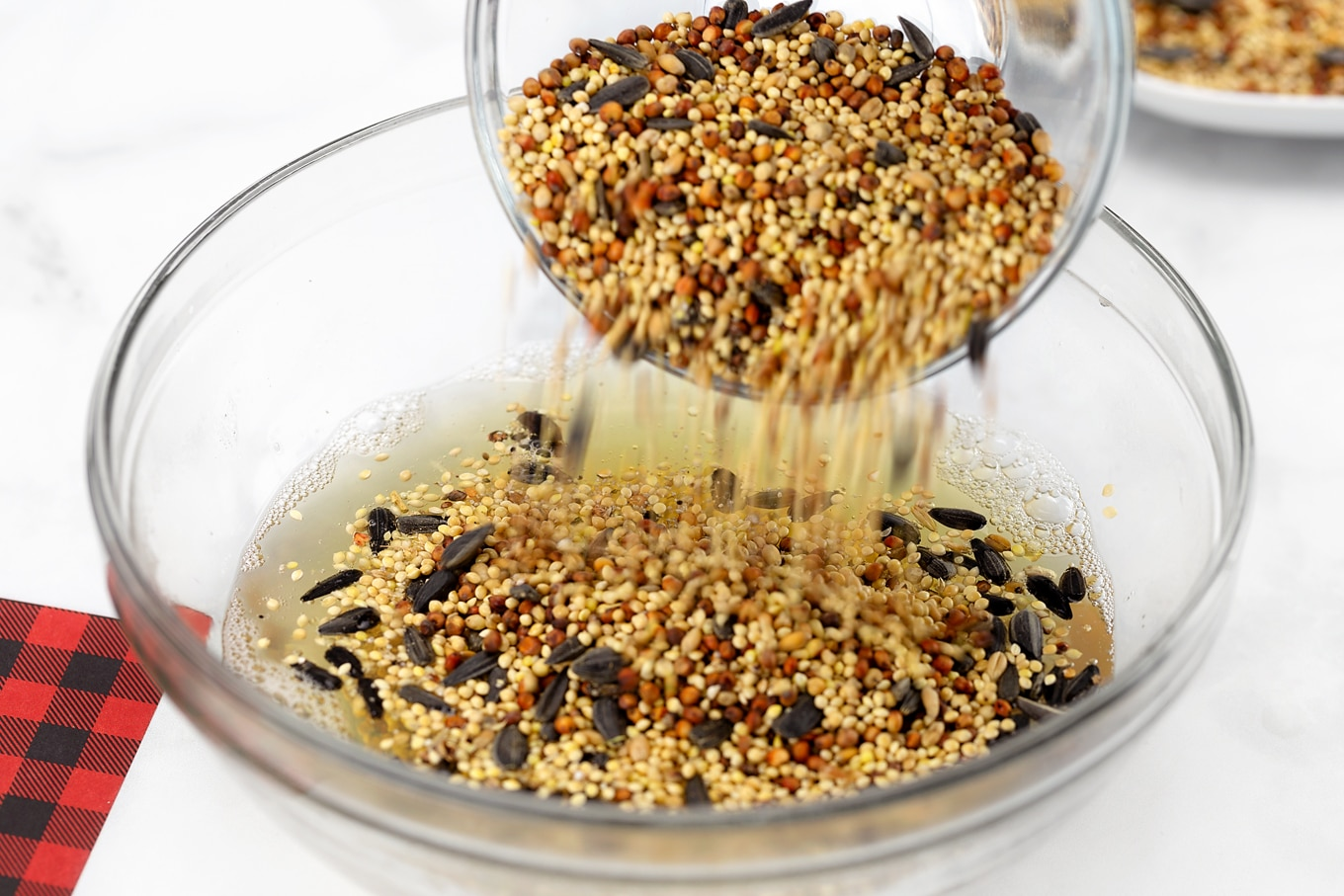 Mixing Birdseed with Gelatin and Water