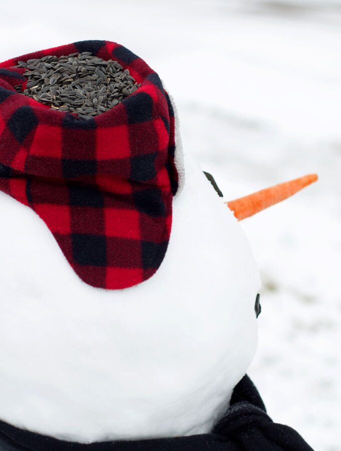How to Make a Snowman Bird Feeder