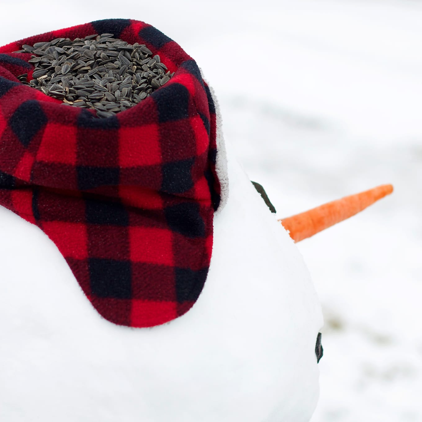 Snowman Wearing Plaid Hat Filled with Bird Seed