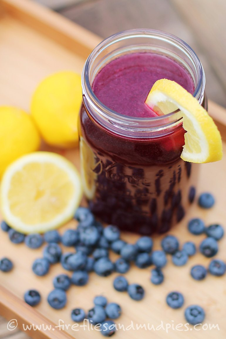 Wild Blueberry Lemonade | Fireflies and Mud Pies