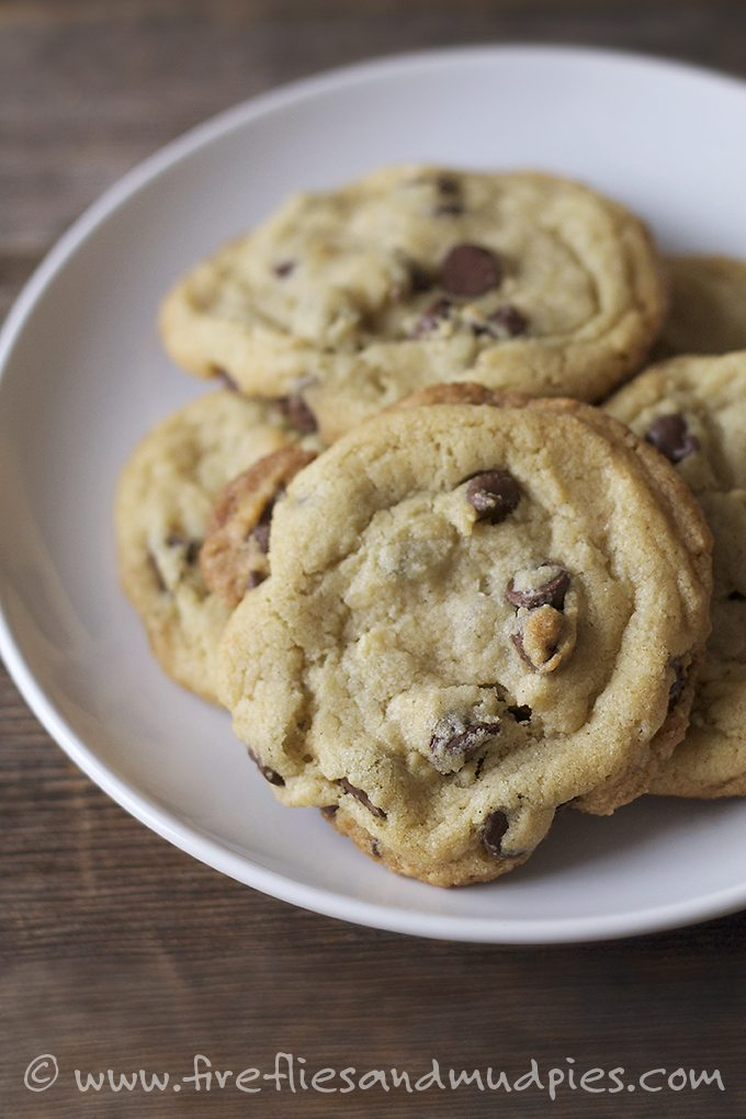 Perfect Chocolate Chip Cookies | Fireflies and Mud Pies