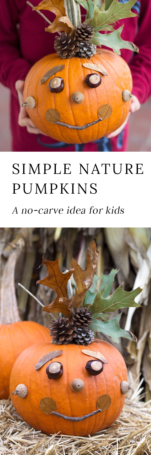 Kids will love creating a whimsical No-Carve Nature Pumpkin with pinecones, nuts, seeds, leaves, and twigs. Perfect autumn fun for families!