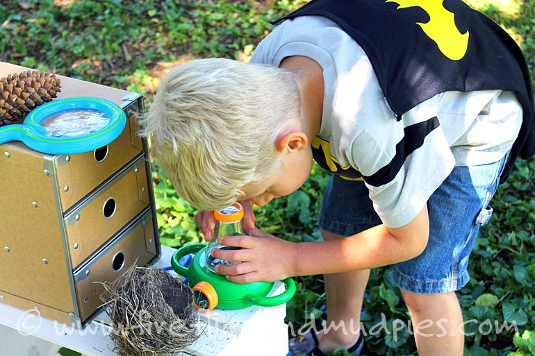 Exploring Nature with Kids | Fireflies and Mud Pies