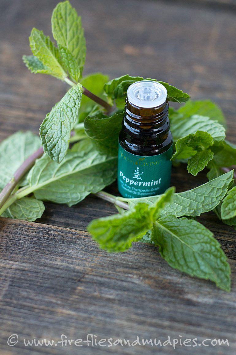 Peppermint Essential Oil | Fireflies and Mud Pies