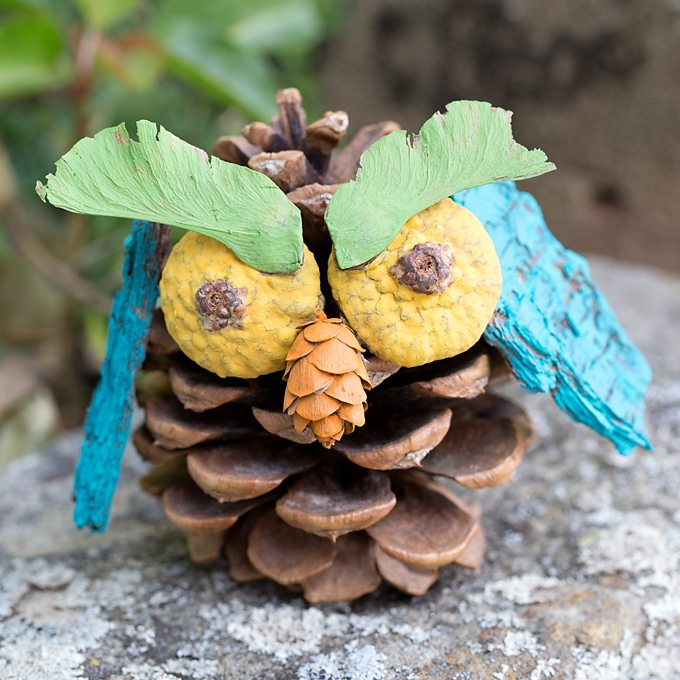 Pinecone Owl Craft for Kids