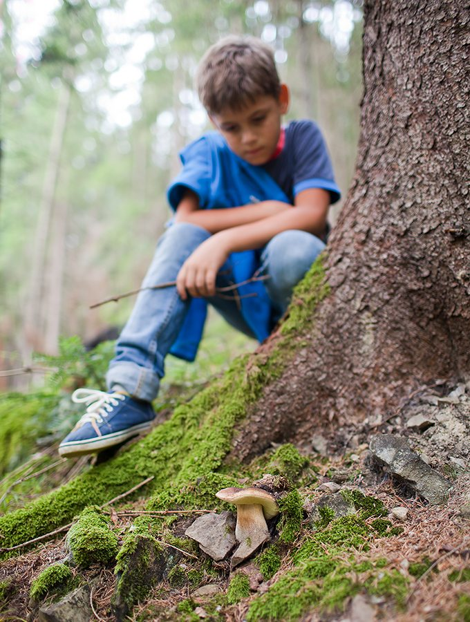 Tips for taking enjoyable nature walks with kids