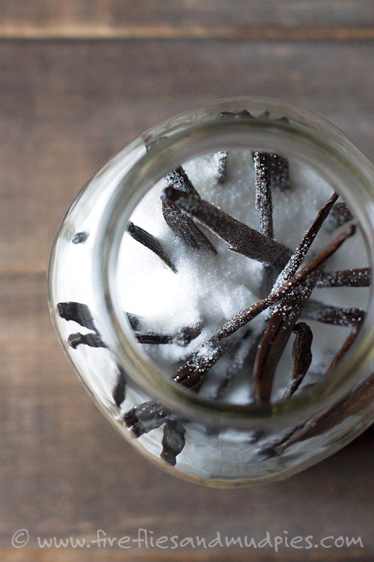 Vanilla Infused Sugar | Fireflies and Mud Pies