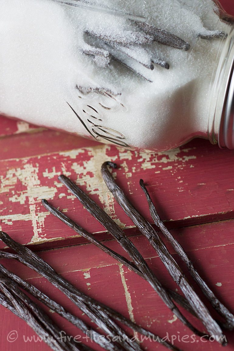 Mmmm, vanilla infused sugar is perfect for fall and holiday baking! (Makes a great gift too!)| Fireflies and Mud Pies