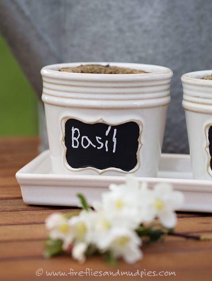 Last-Minute Spring Gift Idea