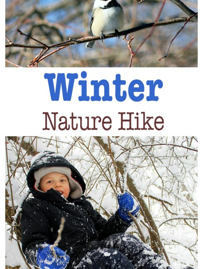 Winter Nature Hike
